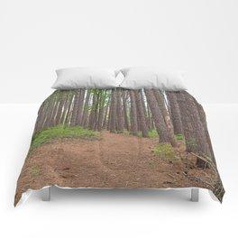 Cranesville Swamp Pine Trail Comforters