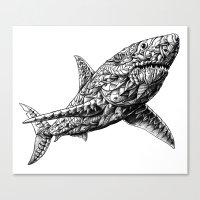 bioworkz Canvas Prints featuring Great White by BIOWORKZ