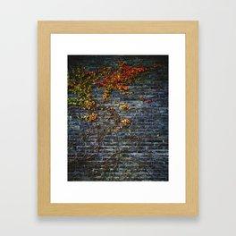 Vines on a Brick Wall (Color) Framed Art Print