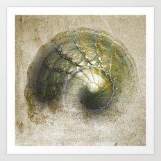 Abstract Snail Art Print