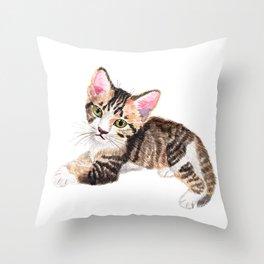 Brown Tabby Baby Cat Throw Pillow