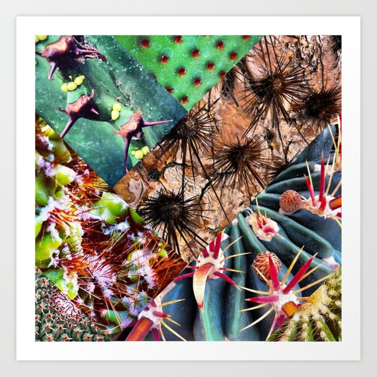 Cactus Collage Art Print