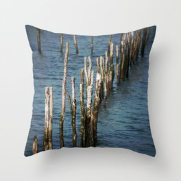 Wooden stakes Throw Pillow