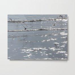 Birds Flying Over Water Metal Print