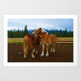 Horses in Jasper National Park, Canada Art Print