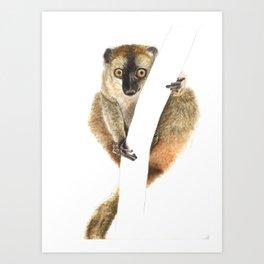 Hanging with a Lemur Art Print