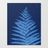 fern Canvas Prints featuring Fern by Jill Byers