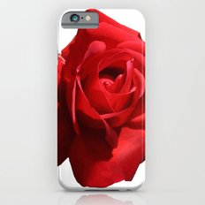 Red Rose Isolated Slim Case iPhone 6s