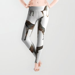 Giraffes Pattern Leggings