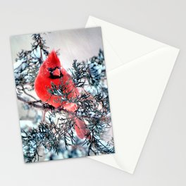 Valentine's Day Blizzard Cardinal Stationery Cards