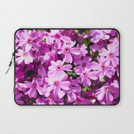 Fuchsia.  Laptop Sleeve