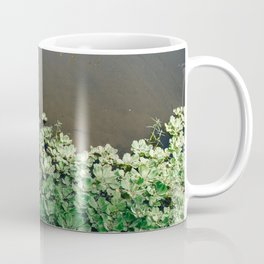 Florida Lake with Fresh Water Plants Coffee Mug
