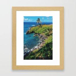 Hawaii in Jun Framed Art Print