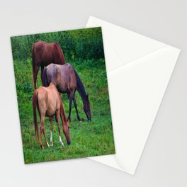 Grazing Horses Stationery Cards