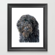 Pokey the Black Labradoodle Framed Art Print