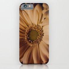 Antique Daisy iPhone 6s Slim Case