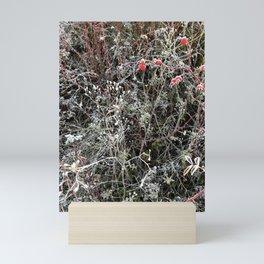 Season of the Changes Mini Art Print