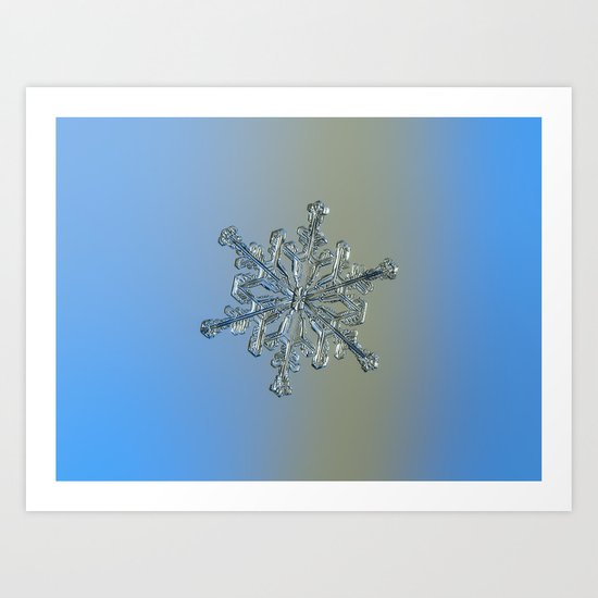Real snowflake macro photo - 13.02.17 2 Art Print