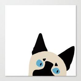 Peeking Siamese Canvas Print