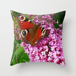 Peacock Butterfly Impression Throw Pillow