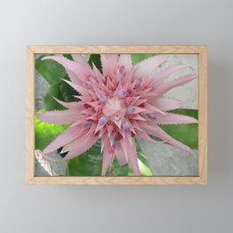 Pink and Blue Framed Mini Art Print