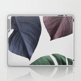 Monstera 02 Laptop & iPad Skin