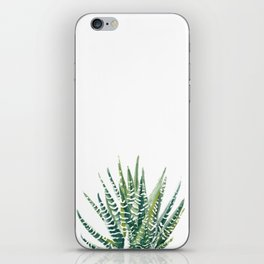Zebra Cactus iPhone Skin