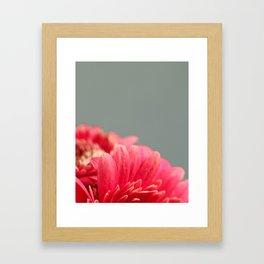 006 Flower Framed Art Print