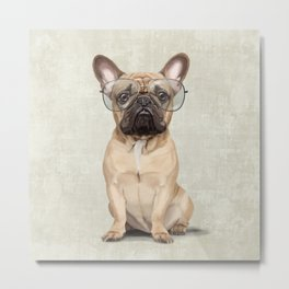 Mr French Bulldog Metal Print