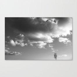 Soulmates ~ landscape Canvas Print