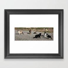 Seven cats Framed Art Print