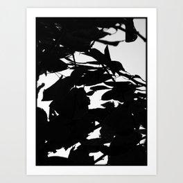 Dark Fall Leaves Art Print