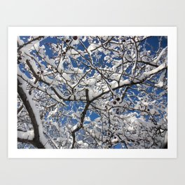 Crabapple Tree Art Print