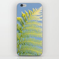 fern iPhone & iPod Skins featuring Fern by Pati Designs