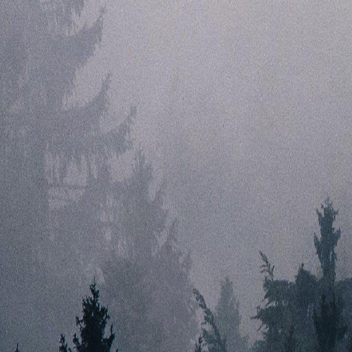 Lost in the Fog Leggings
