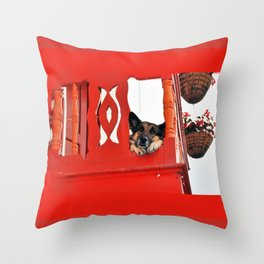 Sad Dog In Red Balcony. Throw Pillow