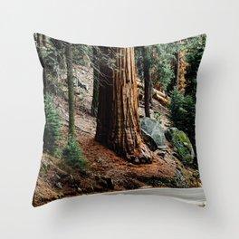 giant sequoia i Throw Pillow