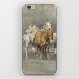 A Band of Horses iPhone Skin