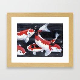 Koi 1 Framed Art Print