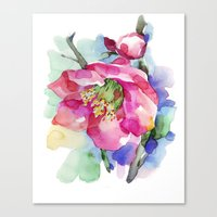 cherry blossom Canvas Prints featuring Cherry Blossom by A cup of grey tea