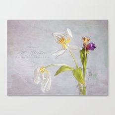 tulips in their prime of life Canvas Print