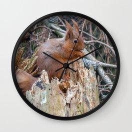 woodland delights Wall Clock