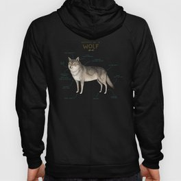 Anatomy of a Wolf Hoody