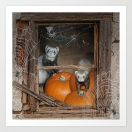 Ferrets Halloween Pumpkin Guard Art Print