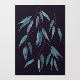 Eucalyptus leaves on deep blue Canvas Print