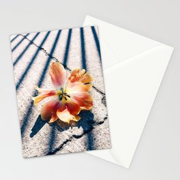 Tulip Stripes Stationery Cards