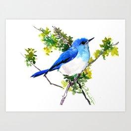 Mountain Bluebird, blue bird, art design blue green cottege Art Print