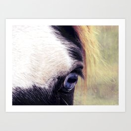 Blue Horse Eye Art Print