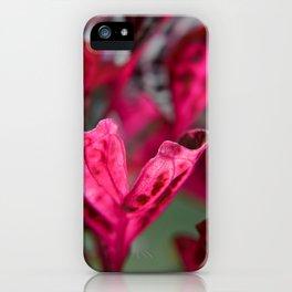Rich Magenta iPhone Case