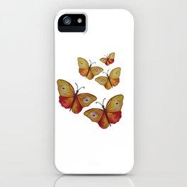 Summer Butterflies iPhone Case